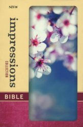 NIV Impressions Bible